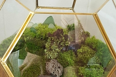 """The Chattery Presents """"Create Your Own Terrarium"""""""